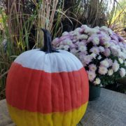Fall Fest & Craft Fair Fundraiser Pumpkin Painting Contestant - Community Hotels 2017