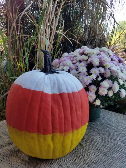 Fall Fest & Craft Fair Fundraiser Pumpkin Painting Contestant - Community Hotels 2017