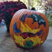 Fall Fest & Craft Fair Fundraiser Pumpkin Painting Contestant - Shadow Drawing 2017