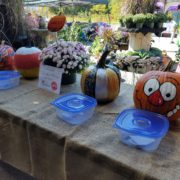 Fall Fest & Craft Fair Fundraiser Pumpkin Painting Contestants 2017