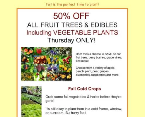 Flash Sale fruit Herbeins Garden Emmaus Pa