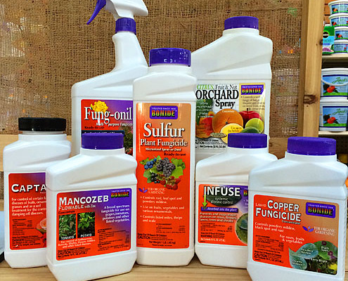 Fungicide – Herbeins Garden Center | PA Lehigh Valley