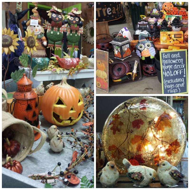 Herbein's Garden Fall Decor