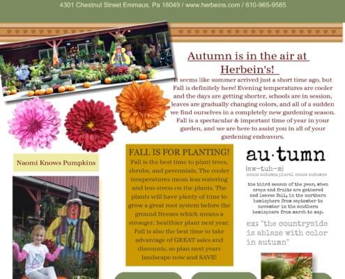 Fall Newsletter 2016 2-001 Herbein's Garden Emmaus Pa