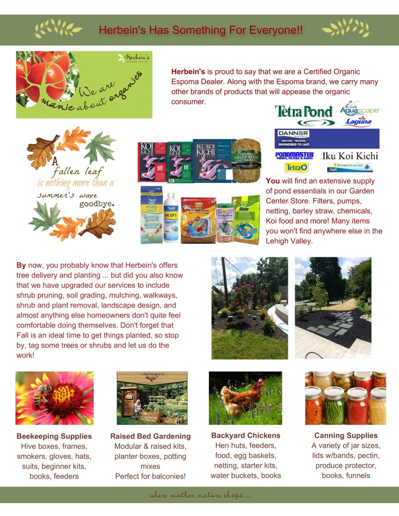Fall Newsletter 2016_2-006