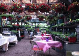 Garden Center Event Hosting