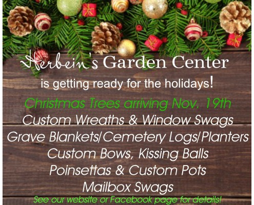 Holidays at Herbein's Garden Center Emmaus Pa