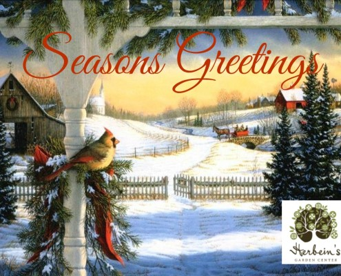 Seasons Greetings Herbeins Garden Center Emmaus Pa