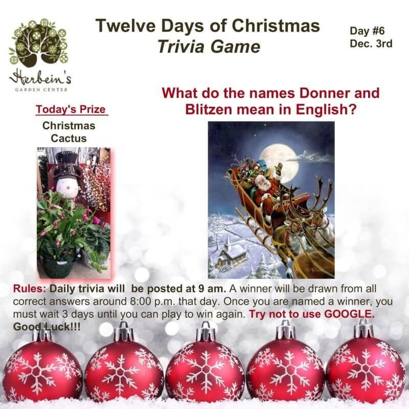 Herbeins Garden Twelve Days of Christmas Trivia Day 6