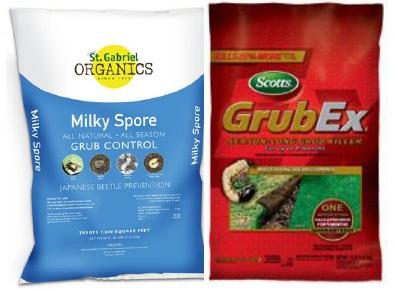 milky spore grubex Grub Control Killer Herbeins Garden Center Emmaus Pa