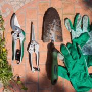Pruning your property pruners trowel Herbeins Garden Center Emmaus Pa
