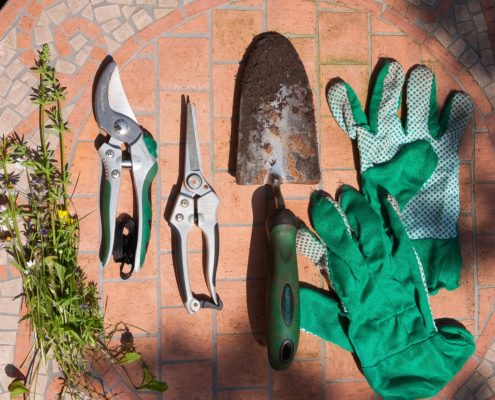 Pruning your property pruners trowel Herbeins Garden Center Emmaus Pa
