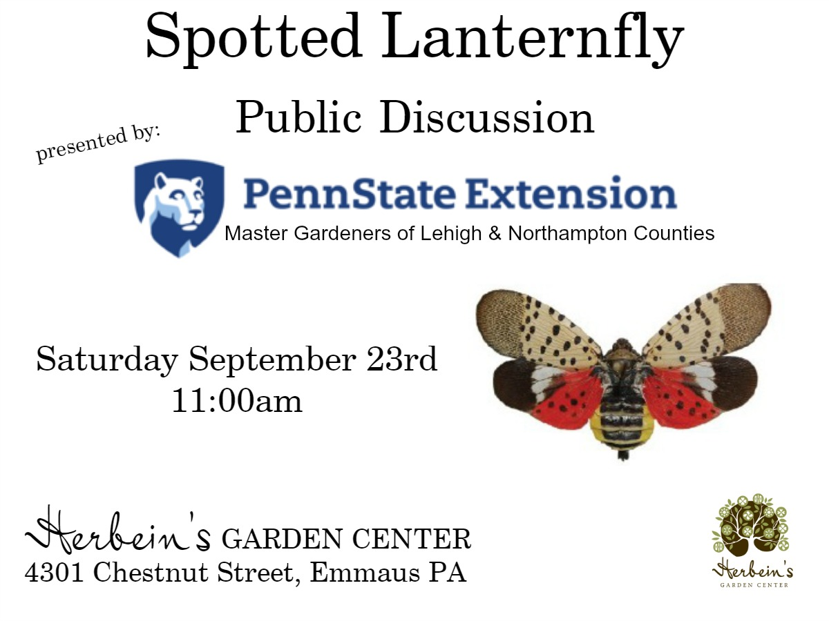 Spotted Lanternfly Public Discussion Event Herbeins Garden Center Lehigh Valley Penn State Extension Office Speakers Master Gardeners Emmaus PA