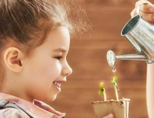Planting a Kid Friendly Garden Image Espoma