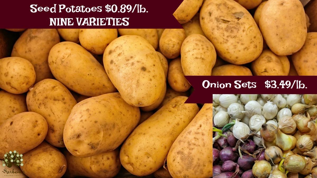 Herbeins Garden Center Potatoes & Onions