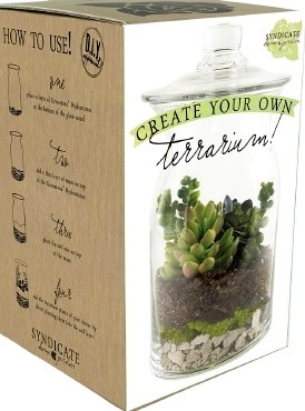 Syndicate Terrarium Kit