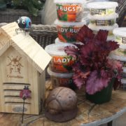 Ladybugs & Houses Herbeins Garden Center