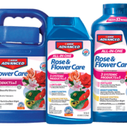 Bayer Advanced Rose Flower Care Herbeins Garden Center