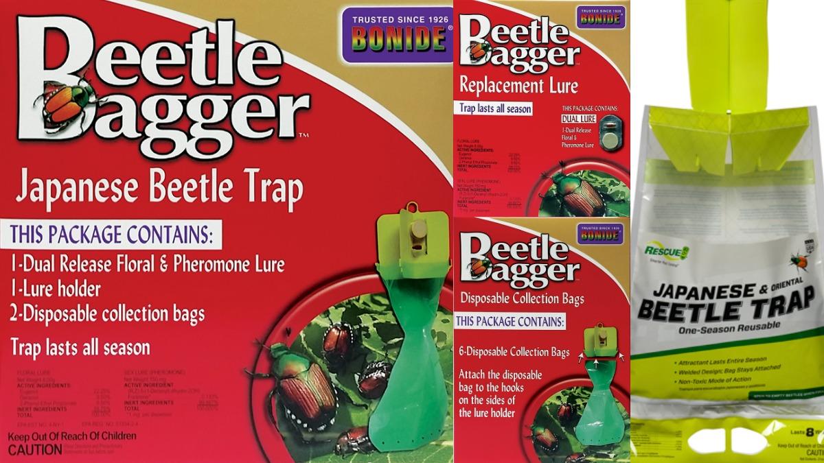 Oriental & Japanese Beetle Traps Herbeins Garden Center
