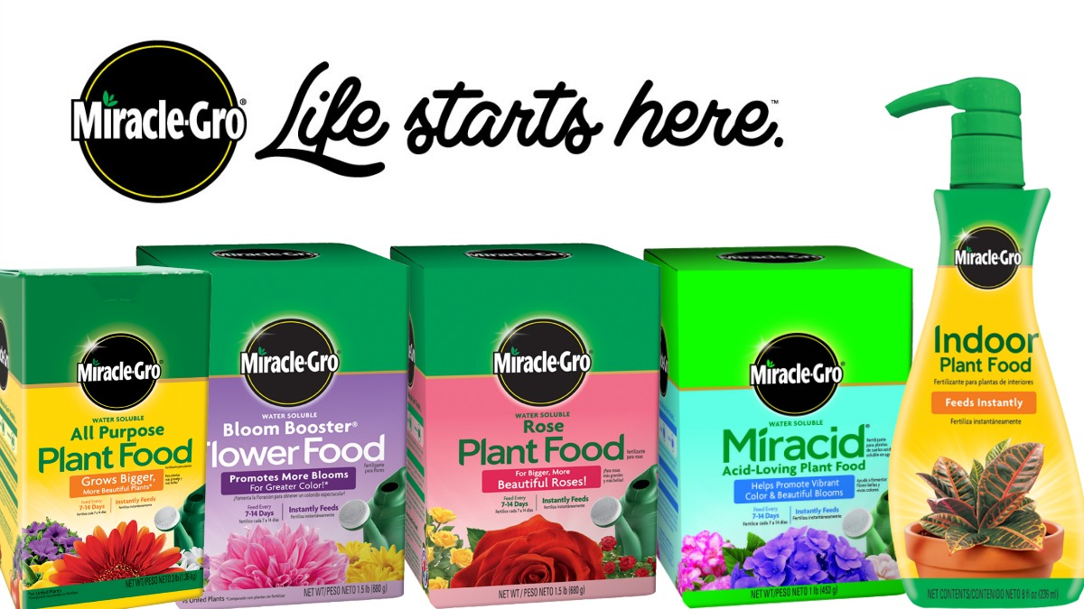 Miracle Gro Fertilizers and Plant Food Herbeins Garden Center