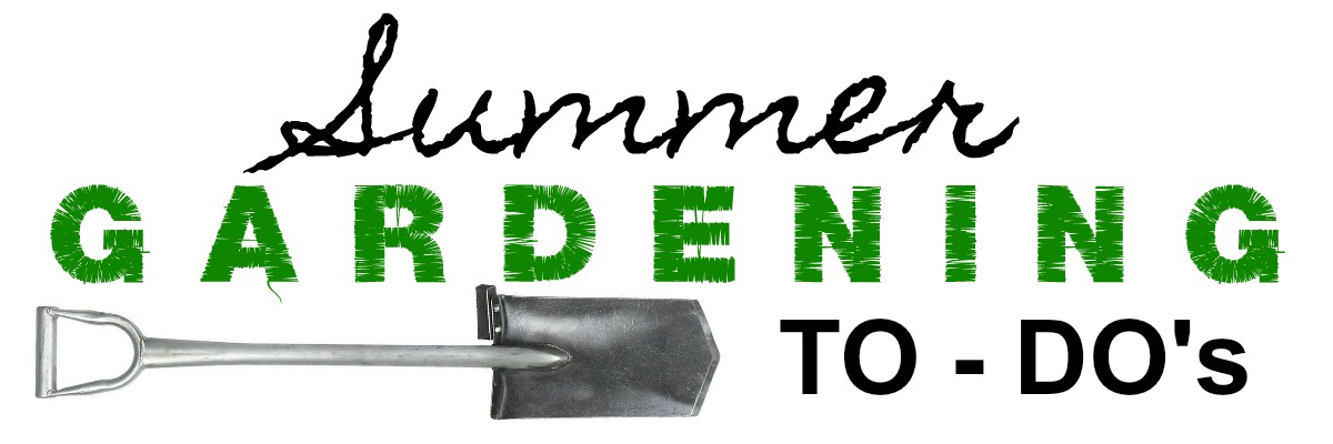Summer Garden To-Dos