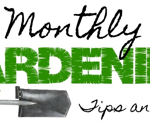 Monthly Gardening Tips