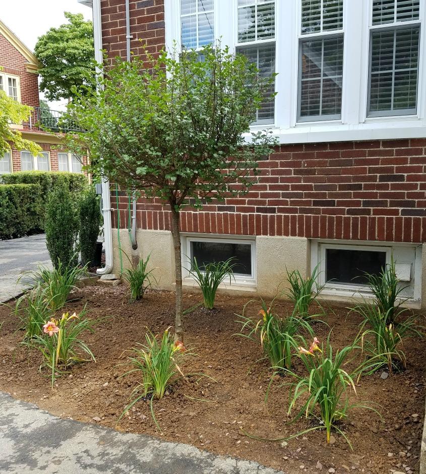 Planting Services – Herbeins Garden Center | PA Lehigh Valley ...