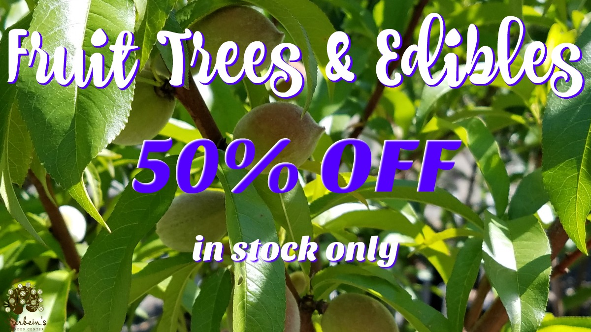 Herbeins Garden Center Fruit Tree Sale 50% OFF