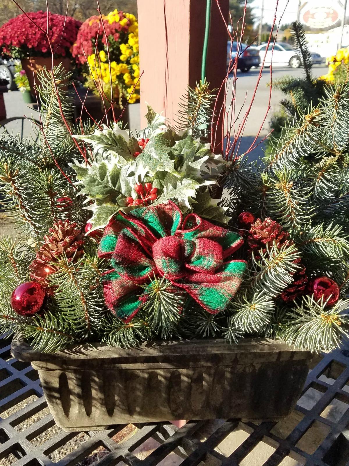 Herbeins Garden Center Christmas Log