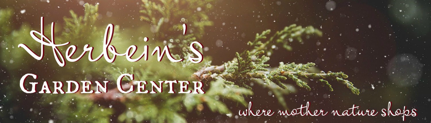 Herbeins Winter Cover